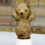 funny-shaped-vegetables-fruits-14