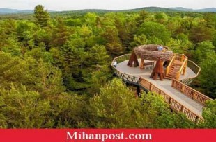 New Wild Center attraction provides elevated journey through Adirondacks (1)