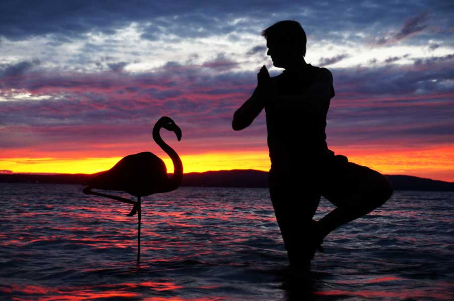 My Cardboard Cutouts Come To Life In Magical Sunset Silhouettes (41)