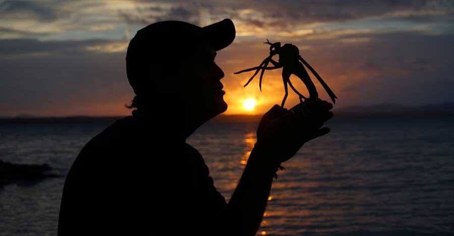 My Cardboard Cutouts Come To Life In Magical Sunset Silhouettes (6)