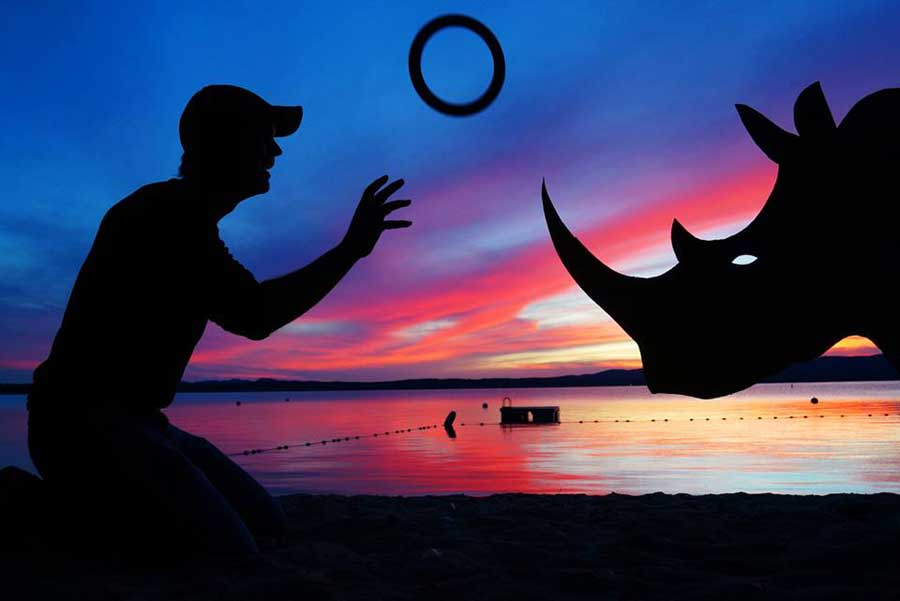My Cardboard Cutouts Come To Life In Magical Sunset Silhouettes (7)